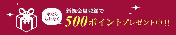新規会員登録で今ならもれなく500ポイントプレゼント中!